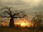 Tanzania – Landscape