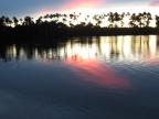 Amazonia – Landscape