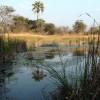 Zambia – Scenic Place