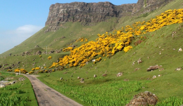 Mull typical road