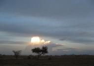 Sunset in Awash N.P.