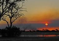 Bushfire at sunset