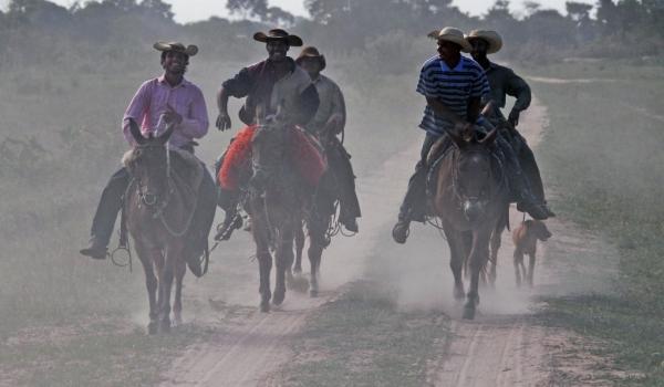 Return of Cowboys