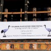 Black-necked Crane Festival