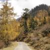 Near Chelela Pass
