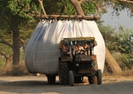 Transport of hay