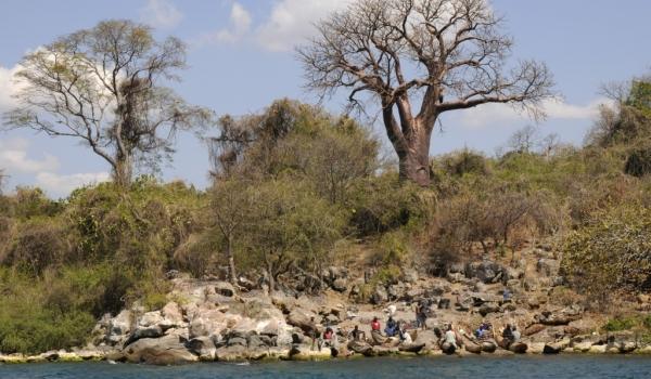 «Wild» island in the lake