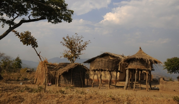 Thatched store