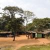 Bush village