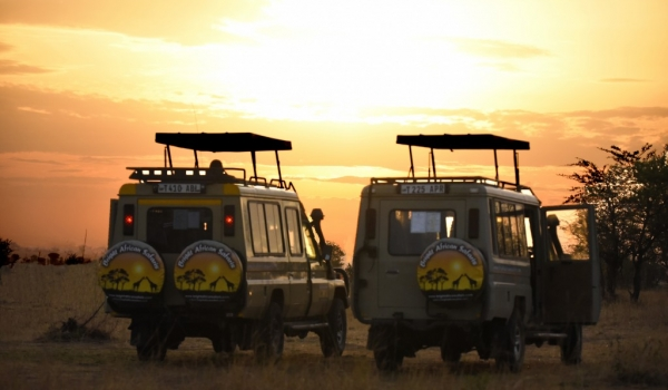 Land Rovers «just married»