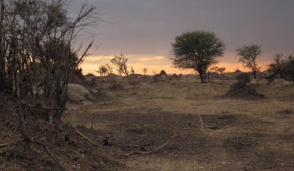 Landscape calling for rain