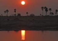 Secret life at sunset