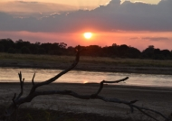 Sunsets in South Luangwa…