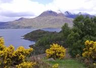 Scotland Typical scottish wilderness