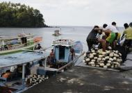 Batu Putih Fishermen Boats