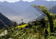 Surroundings of Zhemgang