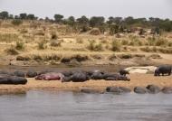Hippo beach – general view