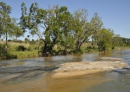River in Sabi Sand reserve