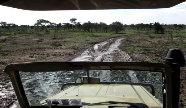 Some mud to add fun!