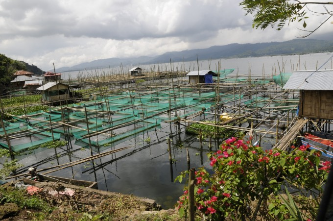 Fish farms on Lake Tondano