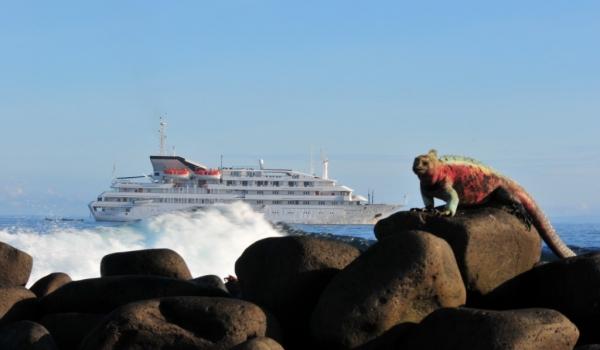 Galapagos – Underwater & Seaside