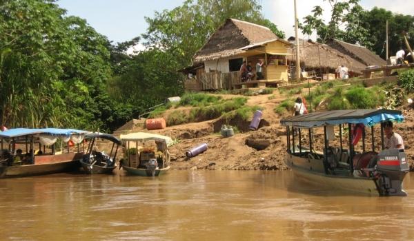 Amazonia  Boca Manu