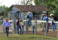 Cowboys in action!
