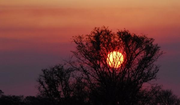 Zambia – Sunset at Busanga Plains