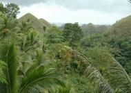 Chocolate Hill