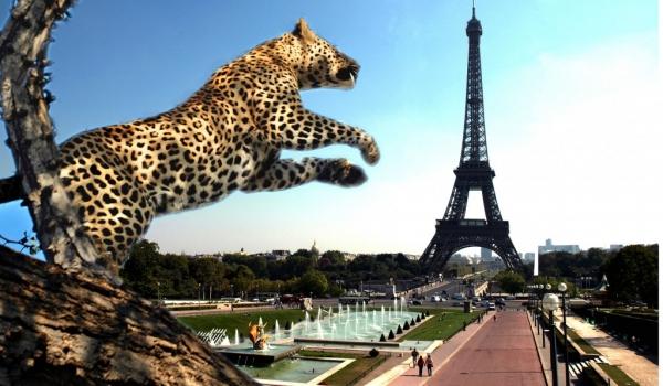 Conquest of Paris