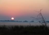 Sunrise at Busanga Plains