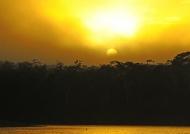 Tambopata Sunset