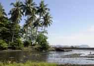 River in Tangkoko NP