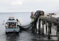 Batu Putih Fishermen