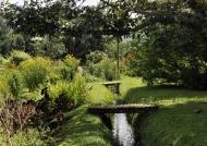 Gardenia Garden