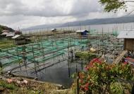 Fish farming-Lake Tondano