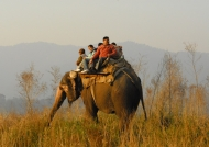 Elephant ride – Corbett N.P.