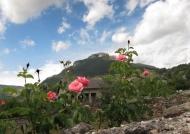Ispagnac – Landscape