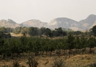 Elephant Rock from far