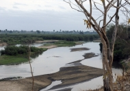 View of the Rufiji River