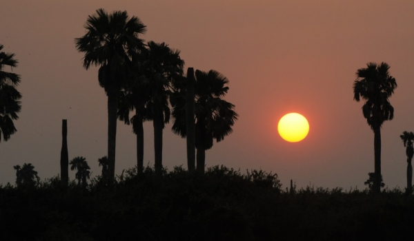 Sunset in Selous – Lac Manze