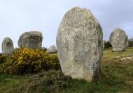 Menhirs of Carnac