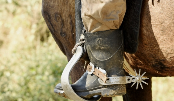 Great boots, poor horse!