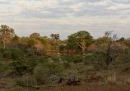Nwanetsi River