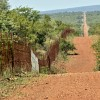 Mozambique fence with S.A.