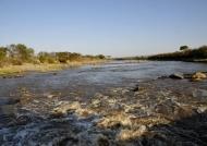 Serengeti – Mara River