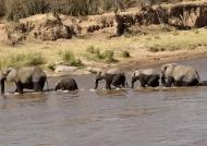 Then crossing the Mara river