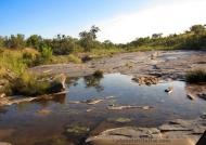 River in Sabi Sand reserve