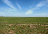 View of Ndutu Plains