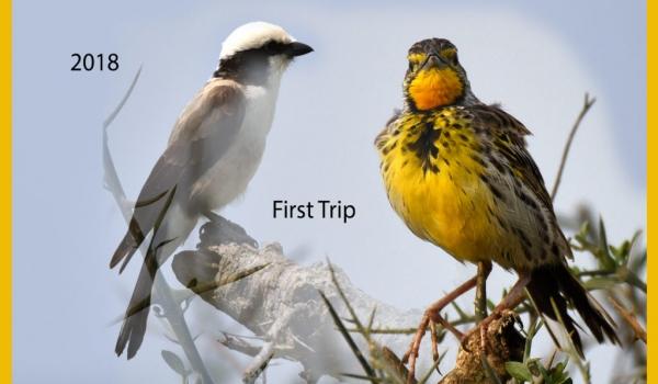 NDUTU FIRST TRIP